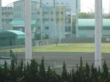 平成最後の阪神2軍