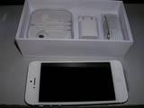 iPhone5とその付属品