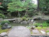 デカイ庭と池