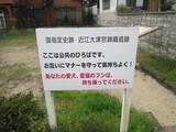 まさかの大津宮遺跡