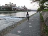 鴨川沿いを歩く