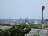穏やかな初夏の太平洋
