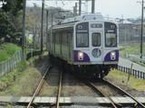 杉山駅に到着する1805F「菖蒲」号