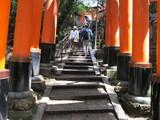 結構急な階段