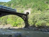保津峡を行く特急電車