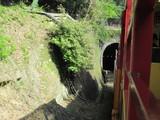 トンネルに近づくトロッコ列車