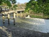 渡月橋を小さくしたような中之島橋