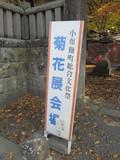 文化祭菊花展示会会場