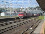 柏崎駅に進入する貨物列車