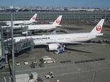 北側は日本航空機だらけ