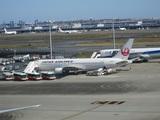 沖止めの日本航空767型機