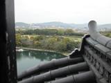 天守閣から日本三大名園・後楽園を望む