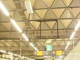 実は今までよく見てなかった屋根の模様