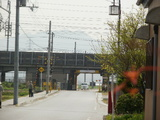 近江鉄道の踏切と新幹線高架橋