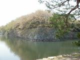 彦根城のお堀端