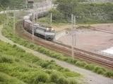 EF81貨物新造機牽引の列車