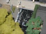 松方○樹川でマグロを釣る